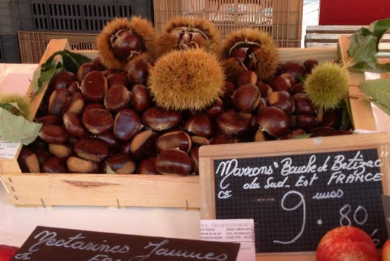 Marrons (Chestnuts) in their anemone-like shell
