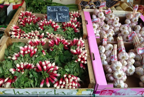 Beautiful vegetables: Pink radishes and garlic
